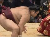 сумо 2011 ноябрь кюсю басё 7-9 дни